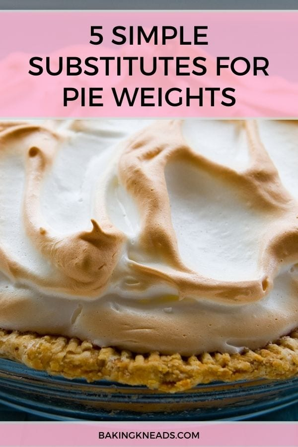 Pie Weights Substitutes Pin