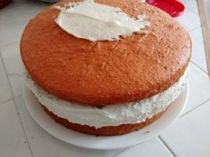 Ice Cream Cake in Process