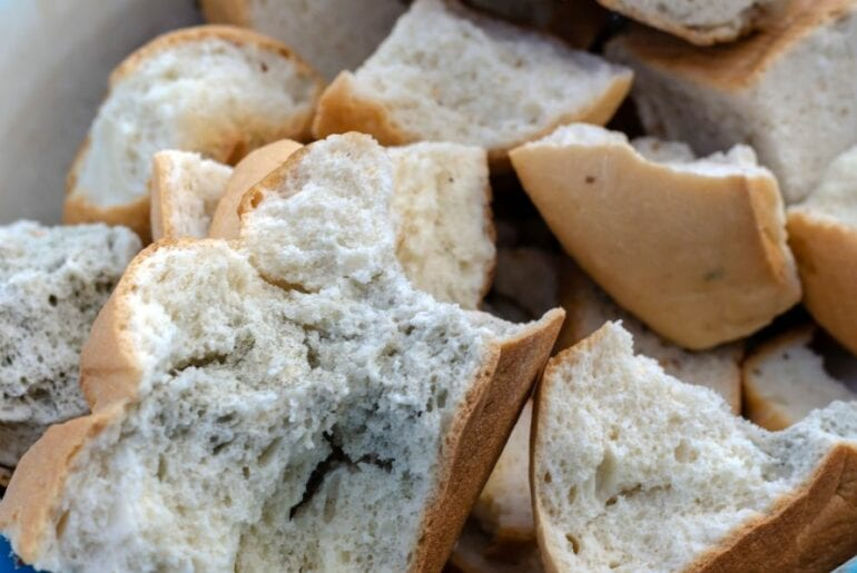 Slices of Moldy Wheat Bread